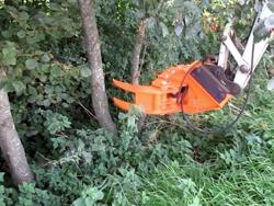 cabezal forestal pinza corte de ramas para mini excavadora mod cf 11