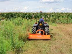 trituradora de martillos tigre 180 para naranjo y olivo